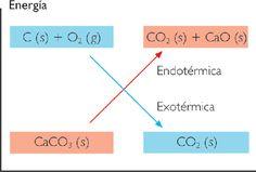 carbonato y calcio en oxido y calcio