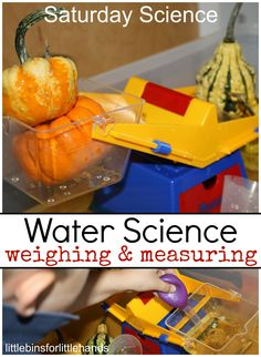 Weighing Measuring Water Science Experiment For Kids Water Science Experiments, Stem Science, Easy Science, Science Lessons, Science For Kids, Science Projects, Autumn Activities For Kids, Fall Preschool, Kids Learning Activities