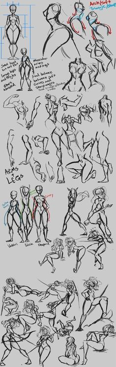 Anatomy action poses