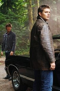 Supernatural: This show has been around for nine years, and the fandom gets more and more intense with each passing moment. Supernatural enthusiasts are so good at keeping the fandom alive that a recent episode of the series teleported the show's characters into the real world so they could interact with the fans. They straight-up broke the fourth wall in order to address how dedicated this fanbase is.