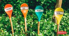 How about this for a hot scoop? A fresh coat of paint and some simple pen work will have your old wooden spoons ready for their new roles as whimsical garden markers. Garden Crafts, Garden Projects, Gardening Tips, Container Gardening, Greenhouse Plans, Garden Markers, My Secret Garden, Lawn And Garden, Garden Oasis