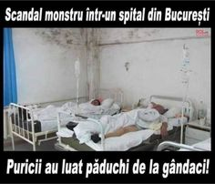 scandal intr-un spital Funny Jockes, Crazy Funny Memes, Funny Texts, Funny Quotes, Funny Life, Funny Images, Funny Pictures, Life Humor, Worlds Of Fun