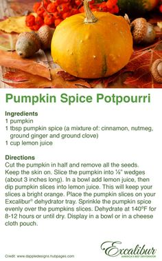 Make Your Own Potpourri with Excalibur Dehydrators! Try Pumpkin Pie Spice Potpourri for 2015!