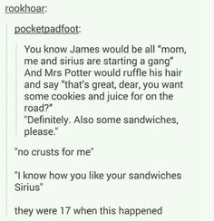James and Sirius. Brotp of ever there was one