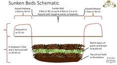 Sunken beds Schematic, go down to grow plants way up!