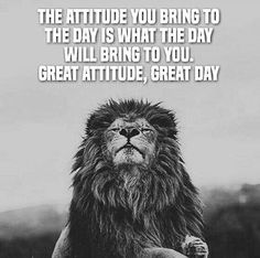 44 Motivational Inspirational Quotes About Life Success 11 Life Quotes Love, Inspiring Quotes About Life, Best Quotes, Great Day Quotes, Quotes About Attitude, Attitude Thoughts, Sad Sayings, Brainy Quotes, Work Quotes