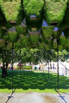 Gallery - Move Over, Green Walls: Living Canopy Comes to West Vancouver - 2