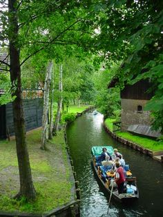 """Spreewald is situated about 100 km south-east of Berlin. It is known for its traditional irrigation system which consists of more than 200 small channels (called """"Fließe""""; total length: 1,300 km ) within the 484-square-kilometre (187 sq mi) area. The landscape was shaped during the ice-age. Alder forests on wetlands and pine forests on sandy dry areas are characteristic for the region. Grasslands and fields can be found as well."""