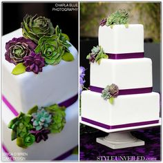 Lovelies and Lace  Pretty cake with succulents!