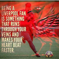 Liverpool Fans, Liverpool Football Club, Rotterdam, Sports Teams, Breathe, Soccer, Wallpapers, Red, Life