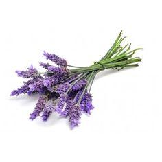 Flores de Lavanda para hacer y decorar Jabones, Velas, Fanales, Cestas, bombas de baño, ambientadores, saquitos aromaticos, inciensos, etc... Disponible en Gran Velada.