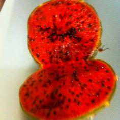 Pitahaya, fruto del desierto.