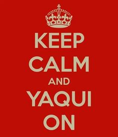 1000 images about yaqui on pinterest photo library deer and indian