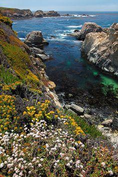 Big Sur coastline, Garrapata State Park, California