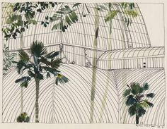 katrin coetzer_edinburgh palm house_ink and gouache on cotton paper_165x235mm_framed_web