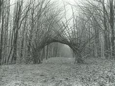 Andy Goldsworthy the Great « Priscilla Woolworth's Blog