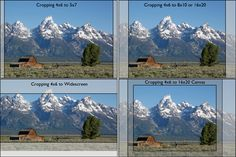 Understanding aspect ratio will help you to successfully shoot and crop photographs for printing.