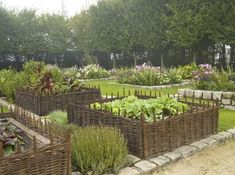 Our willow border edging looks great when used for raised beds also…