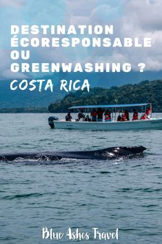 Pin Le Costa Rica destination écoresponsable ou greenwashing ? Costa Rica, Blue Ash, Road Trip, Destinations, Blog Voyage, Green Lifestyle, France, Happiness, Travel