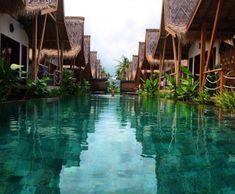 "theadventurechild: ""Jungle/tropical blog """