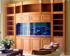Fish Tank With Bookshelves Library Bow Front Aquarium Cabinets Marine