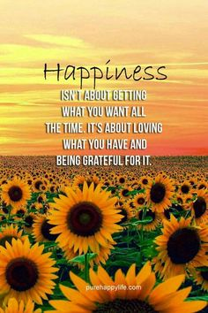Happiness Quote: Happiness isn't about getting what you want all the time. - Happiness isn't about getting what you want all the time. It's about loving what you have and being grateful for it. Life Quotes Love, Happy Quotes, Great Quotes, Positive Quotes, Quotes To Live By, Inspirational Quotes, Happiness Quotes, Choose Happiness, Motivational Sayings