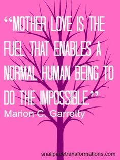 mother love is the fuel that enables a normal human being to do the impossible