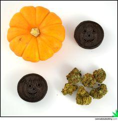 Pumpkin, cookies, and kush! #weed #marijuana #cannabis #kush #herb # ...