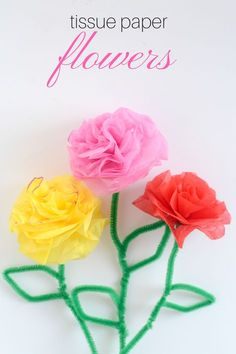 Easy tutorial on how your kid's can make DIY Tissue Paper Flowers for a fun craft.