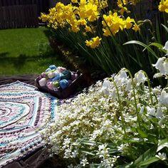 Have a lovely sunny Sunday  #spring #crochet #haken #crochetaddict #haakverslaafd #hekle #virka #virkning #häkeln #crochê #croché #ganchillo #uncinetto #handmade #mormorsrutor #craftastherapy #instacrochet #crochetersofinstagram #örgü #diy #yarn #yarnaddict #colourful #colours #sophiesuniverse #lente by irene_ltd