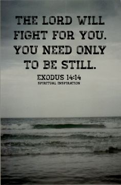 """""""The #LORD will fight for you; you need only to be still"""" (Exodus 14:14, NIV) When was the last time you can remember being still? And I don't mean sitting in traffic or..."""