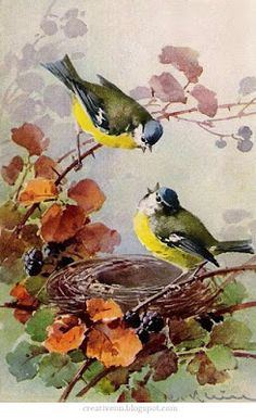 Vintage Postcard Painting by Catherine Klein (born German Artist of Birds, Flowers & Still Life . Watercolor Bird, Watercolor Paintings, Landscape Paintings, Watercolor Portraits, Watercolor Landscape, Abstract Paintings, Art Paintings, Catherine Klein, China Painting