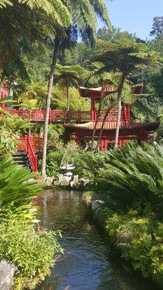 Botanische tuin in Monte
