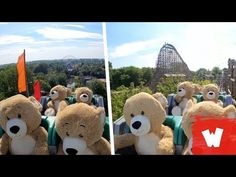 (1) Knuffelberen in #UNTAMED 🤣 - Walibi Holland - YouTube Giant Teddy Bear, Teddy Bears, New Roller Coaster, Attraction, Giant Plush, Amusement Park, Travel With Kids, Make You Smile, Holland