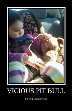 #PitBull #ViciousFail see more at www.facebook.com/pitbullsagainstmisinformation