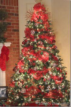 Christmas tree ideas on pinterest christmas trees tree for Red ribbon around tree