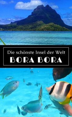 Bora Bora - Discover the most beautiful island in the world and get travel tips for your next vacati Honeymoon Tips, Honeymoon Night, Honeymoon Destinations, Holiday Destinations, Bora Bora, Tahiti, Places To Travel, Places To See, Road Trip