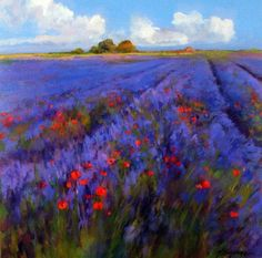 ``*``Lavender field, red poppies and blue skies``*``