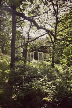 A little cottage… how magical… / #home #enchantment #whimsical