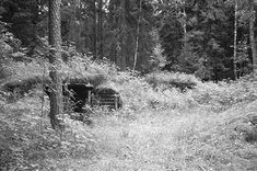 partisan hideout in the rudniky forest  he Story of Abba Kovner - Revolt & Resistance www.HolocaustResearchProject.org