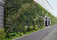 LOVE vertical gardens! one of the first things i hope to design/create as a landscape architect!
