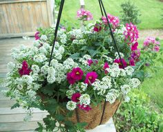 Happy Mother's Day Flowers ~ Beautiful !!      @ home