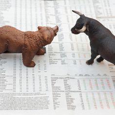 Indian Stock Market, bull market