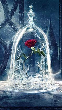 Beauty and the beast flower enchanted rose, disney art, disney movies, ipad wallpaper Tumblr Wallpaper, Cartoon Wallpaper, Wallpaper Free, Disney Phone Wallpaper, Kitty Wallpaper, Cute Wallpaper Backgrounds, Pretty Wallpapers, Wallpapers Wallpapers, Vintage Wallpapers