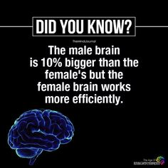 Male Brain Is Bigger Than The Female's True Interesting Facts, Interesting Facts About World, Intresting Facts, Wow Facts, Real Facts, True Facts, Random Facts, Funny Facts, Weird Facts