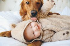 So cute! Golden Retriever pup trying to lick smiling human baby. So Cute Baby, Baby Love, Cute Kids, Pretty Baby, Pretty Kids, Cute Little Boys, Little Babies, Baby Animals, Cute Animals