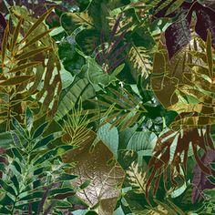 Tropical 1685