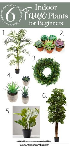 6 Indoor Faux Plants For Beginners | Permaleaf | Mama Bear Bliss
