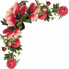 Blomster Ramme Fototapet • Pixers® - Vi lever for forandringer