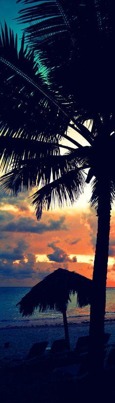 PUNTA CANA, DOMINICAN REPUBLIC !!  Crowd sourced travel deals - CarryOn.com